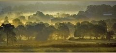 Early Morning - Braithwaite